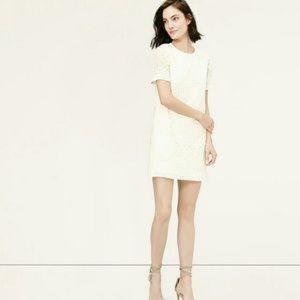 NWT LOFT Stitched Palm Short Casual Dress